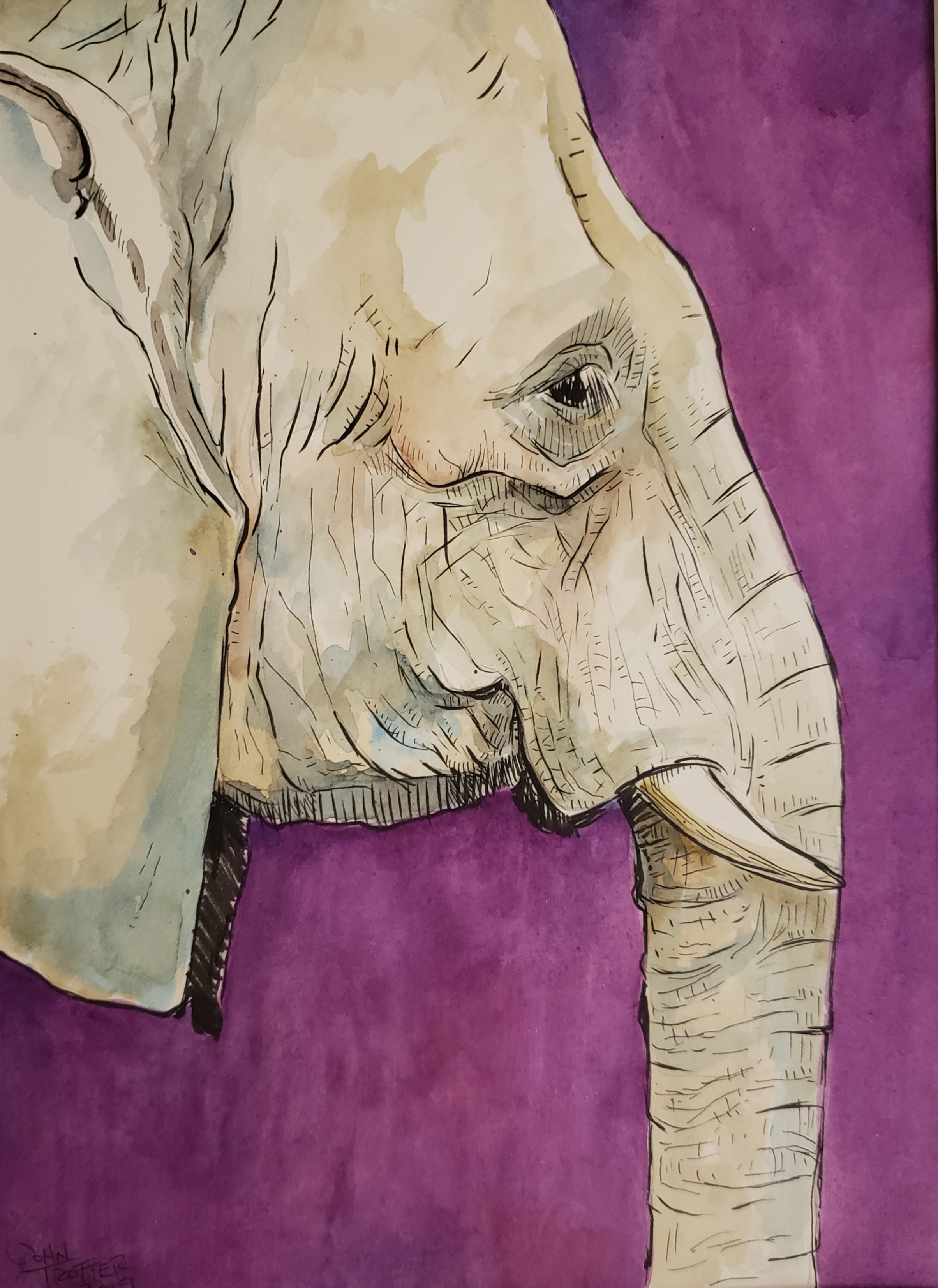 Elephant Watercolor on Paper
