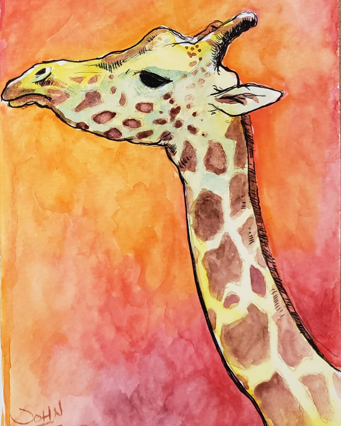 Giraffe Watercolor on Paper